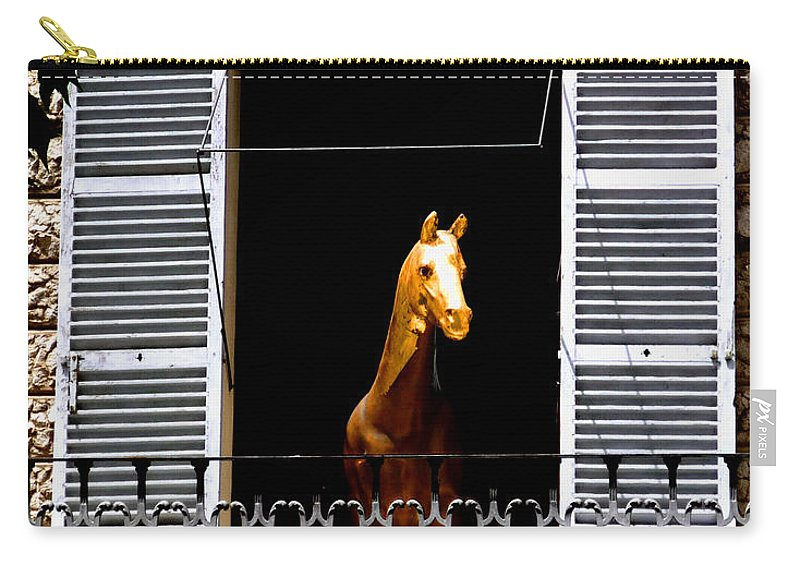 Horse Carry-all Pouch featuring the photograph Golden Stallian by Charles Stuart