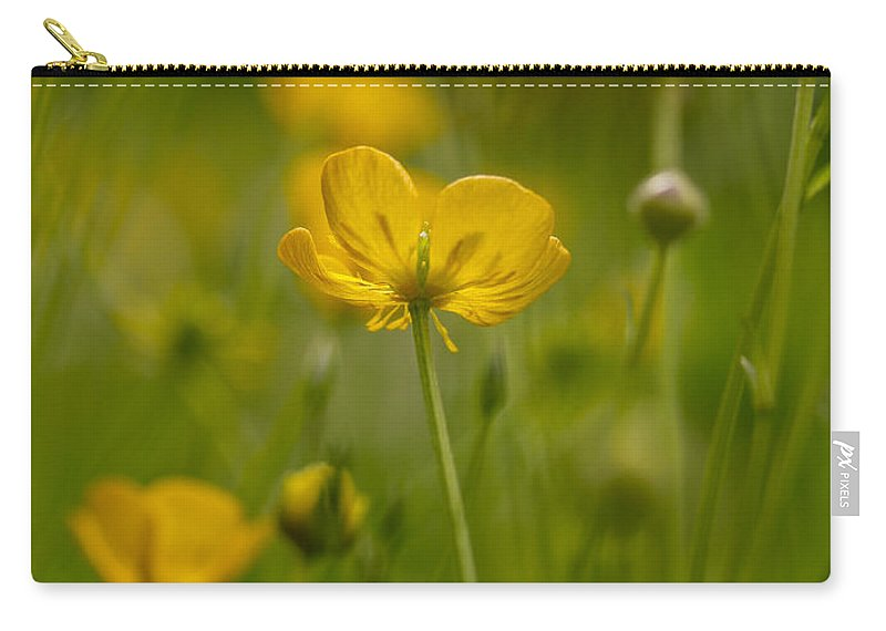Buttercup Carry-all Pouch featuring the photograph Golden Summer Buttercup 3 by Mo Barton