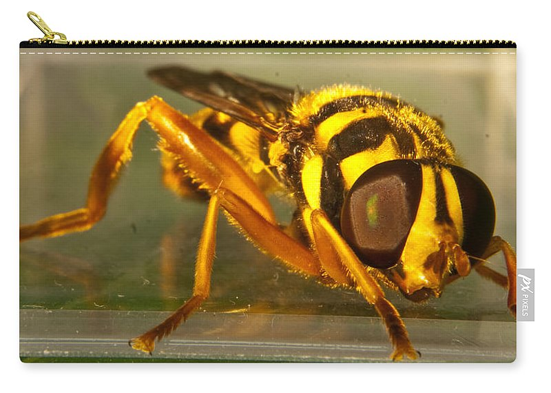Syrphid Carry-all Pouch featuring the photograph Golden Syrphid by Douglas Barnett