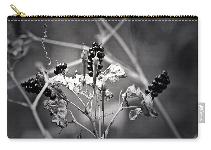 Flower Carry-all Pouch featuring the photograph Gone To Seed Berries And Vines by Teresa Mucha