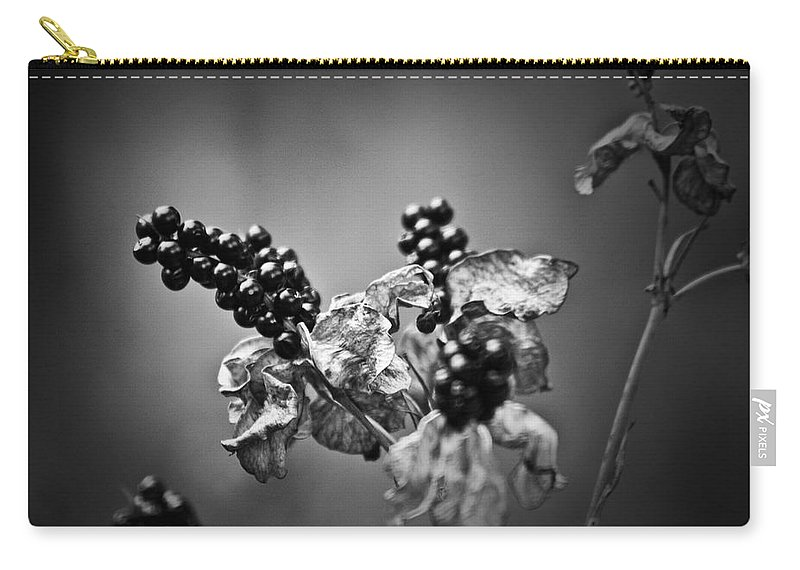 Flower Carry-all Pouch featuring the photograph Gone To Seed Blackberry Lily by Teresa Mucha
