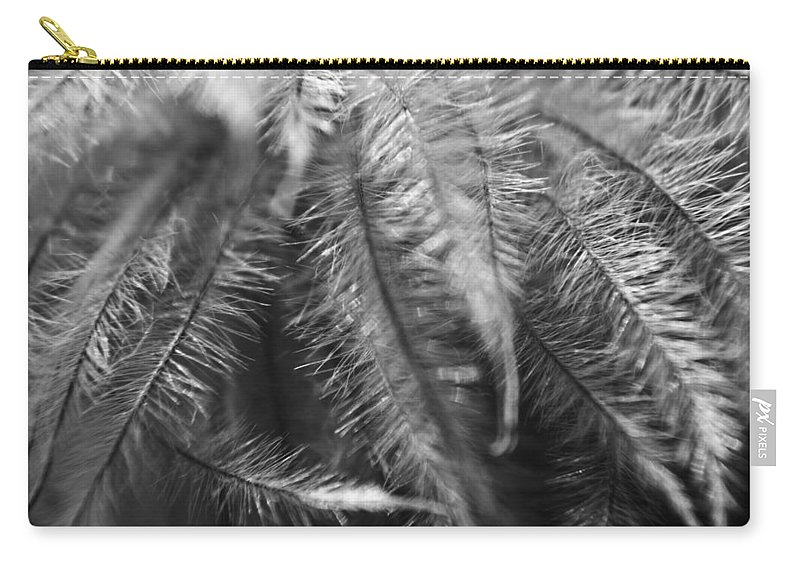Clematis Carry-all Pouch featuring the photograph Gone To Seed Clematis by Teresa Mucha