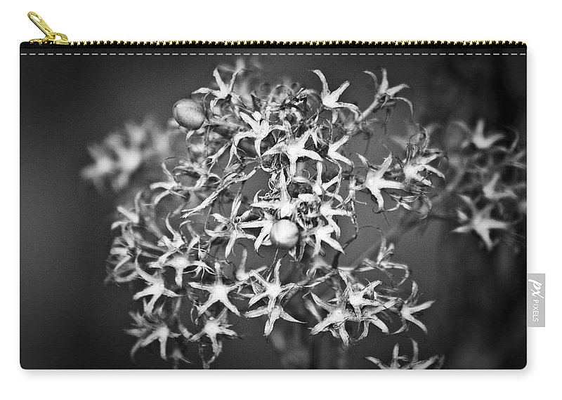 Flower Carry-all Pouch featuring the photograph Gone To Seed Phlox by Teresa Mucha