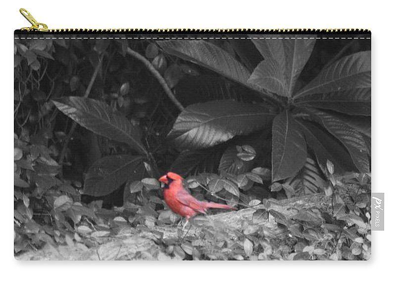 Red Carry-all Pouch featuring the photograph Good Morning Cardinal by John W Smith III