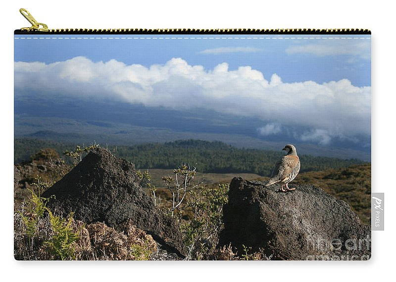 Aloha Carry-all Pouch featuring the photograph Good Morning Maui by Sharon Mau
