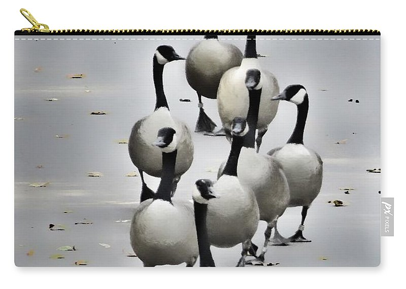 Canada Carry-all Pouch featuring the photograph Goose Parade by Diana Rajala