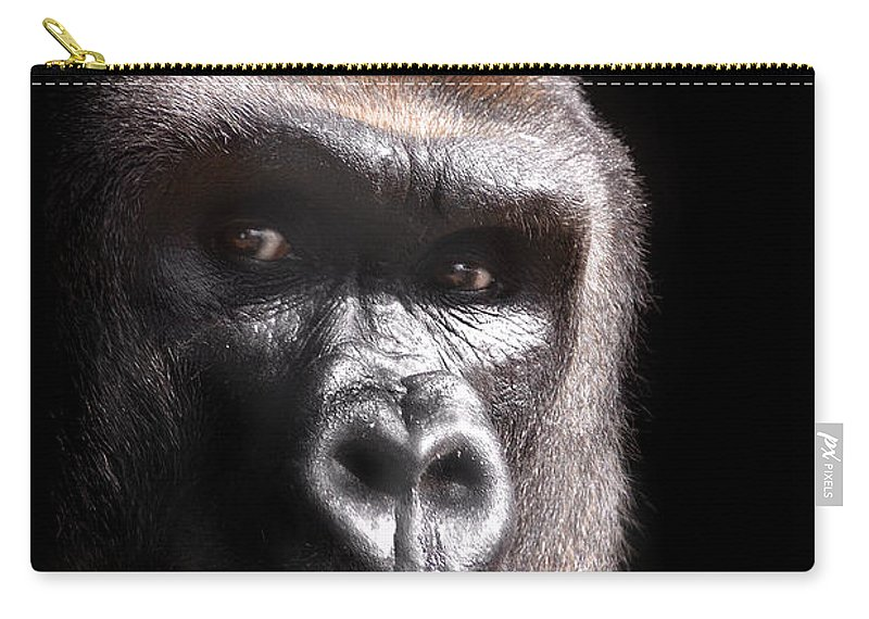Stephanie Butler Carry-all Pouch featuring the photograph Gorilla ... Kouillou by Stephie Butler