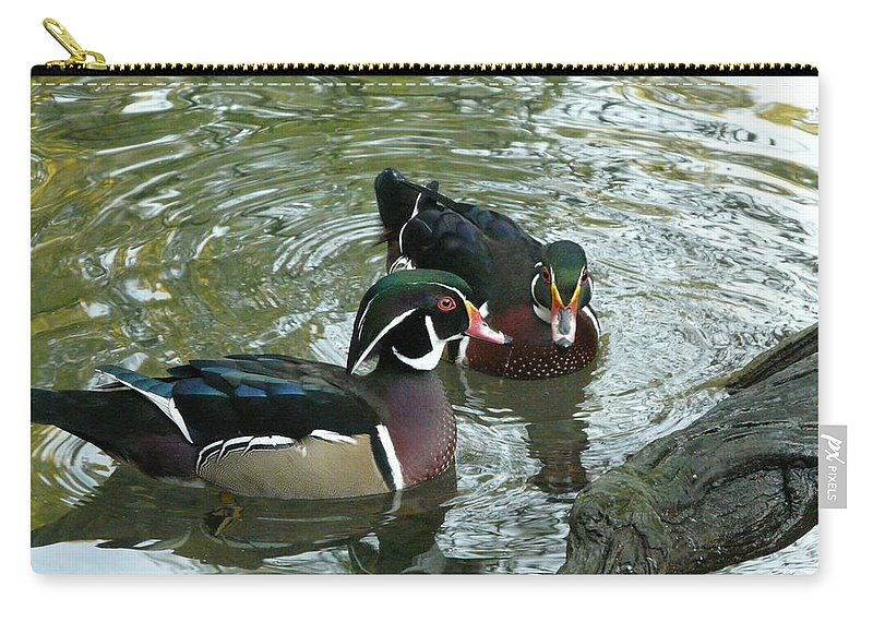 Bird Carry-all Pouch featuring the photograph Gossip by Valerie Ornstein