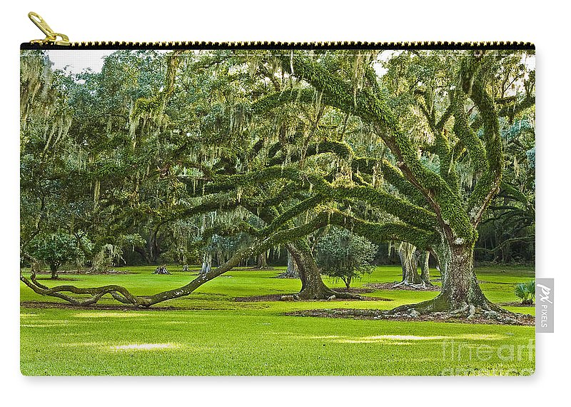 Avery Island Carry-all Pouch featuring the photograph Grand Lady by Scott Pellegrin