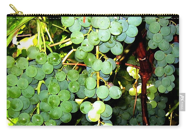Grapes Carry-all Pouch featuring the photograph Grape Harvest by Will Borden