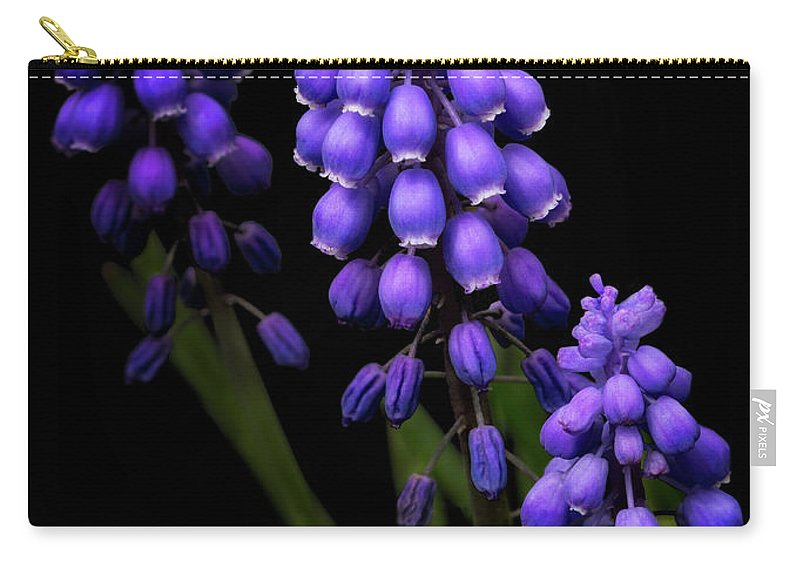 Purple Carry-all Pouch featuring the photograph Grape Hyacinths by Emma England