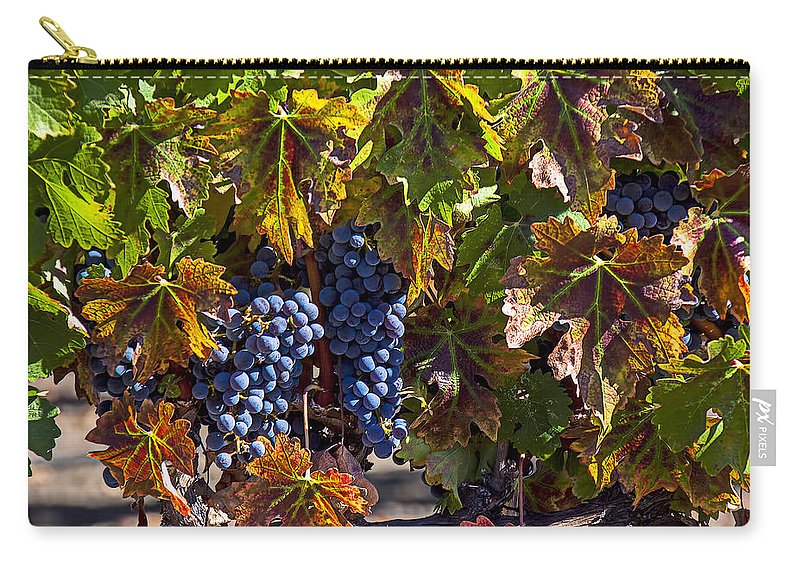 Grapes Carry-all Pouch featuring the photograph Grapes Of The Napa Valley by Garry Gay