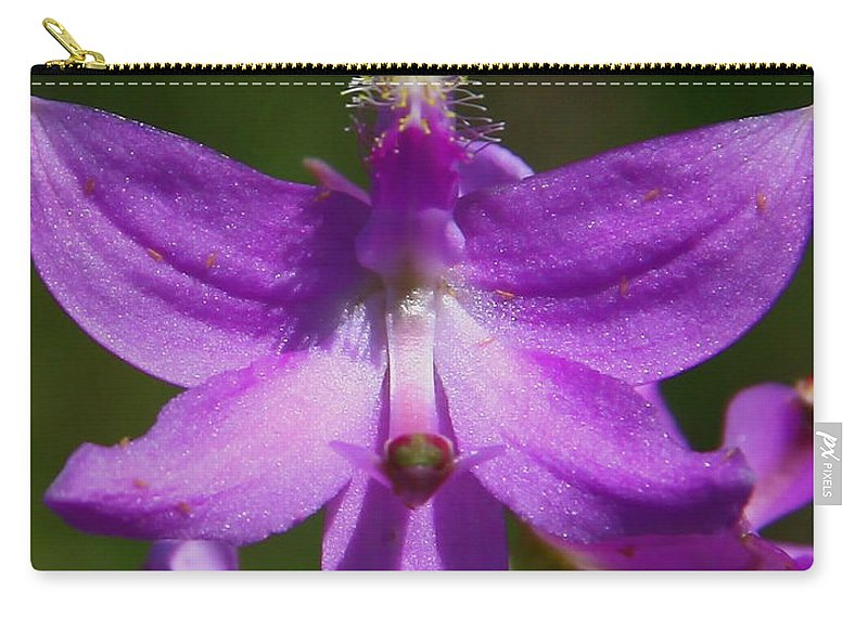 Grass Pink Orchid Carry-all Pouch featuring the photograph Grass Pink Orchid by Barbara Bowen