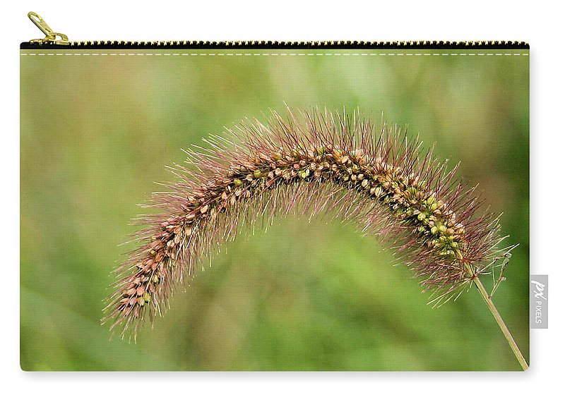 Grass Seed Carry-all Pouch featuring the photograph Grass Seed by Kristin Elmquist