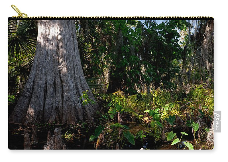 Marsh Carry-all Pouch featuring the photograph Gray Cypress by Christopher Holmes