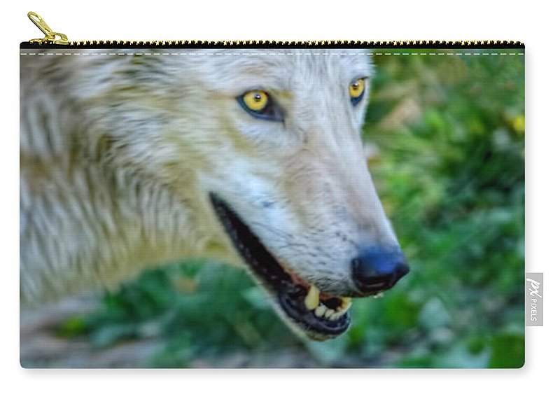 Wolf Carry-all Pouch featuring the photograph Gray Wolf by LeeAnn McLaneGoetz McLaneGoetzStudioLLCcom
