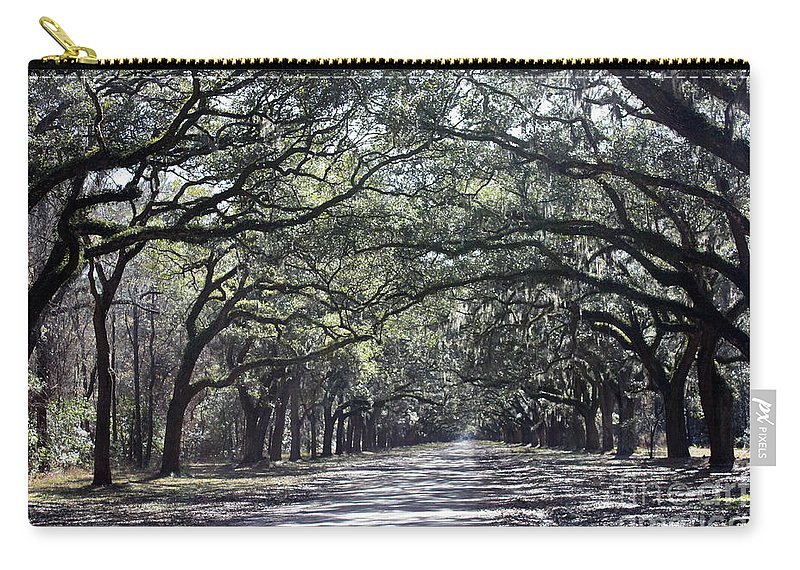 Live Oaks Carry-all Pouch featuring the photograph Grays And Greens And A Little Misty by Carol Groenen