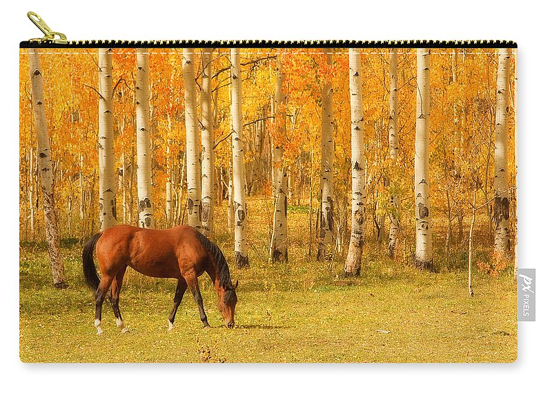 Horse Carry-all Pouch featuring the photograph Grazing Horse In The Autumn Pasture by James BO Insogna