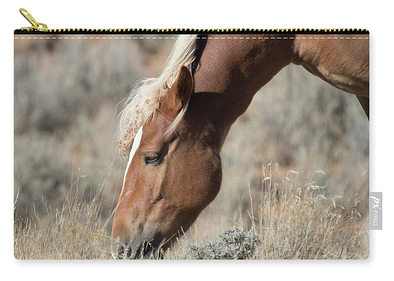 Cody Carry-all Pouch featuring the photograph Grazing Wild Horse by Frank Madia