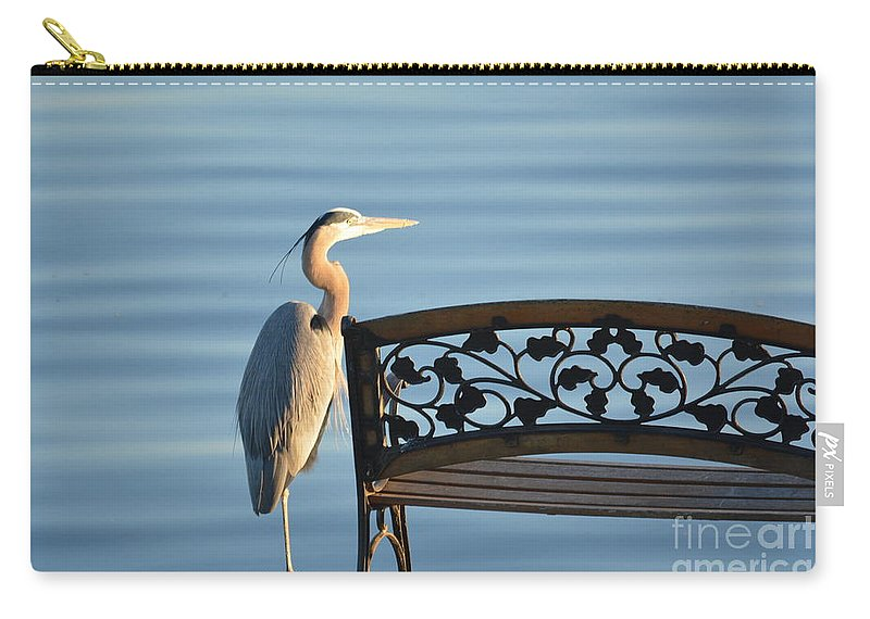 Lake Carry-all Pouch featuring the photograph Great Blue Heron....resting My Leg by Barb Dalton