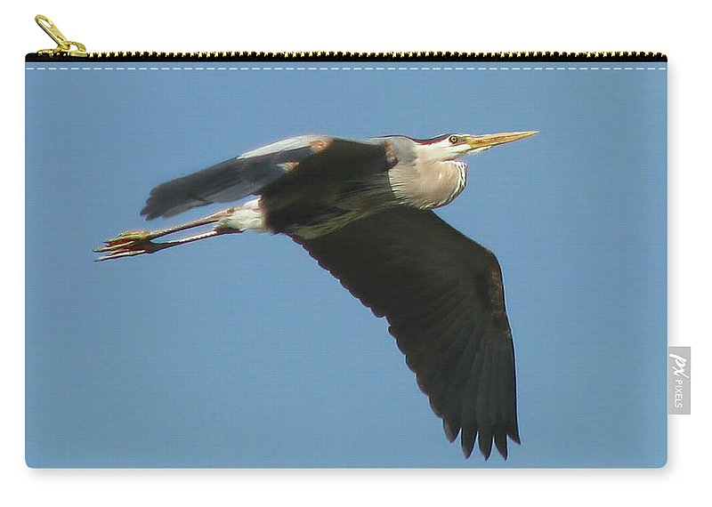 Nature Carry-all Pouch featuring the photograph Great Blue by Peg Urban