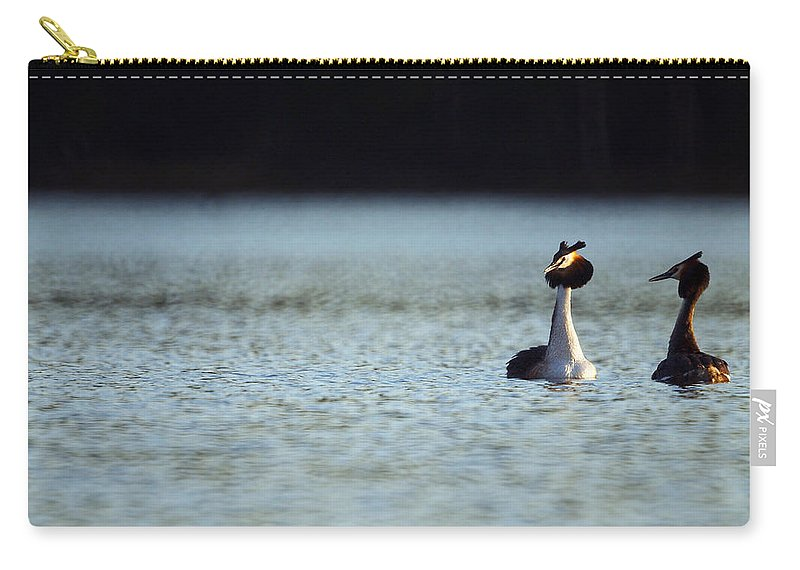 Lehtokukka Carry-all Pouch featuring the photograph Great Crested Grebe by Jouko Lehto