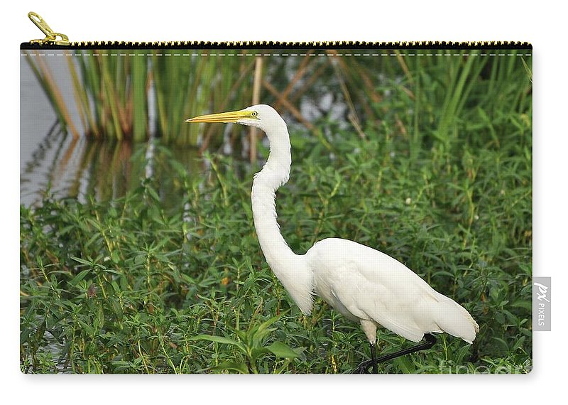 Great Egret Carry-all Pouch featuring the photograph Great Egret Walking by Al Powell Photography USA
