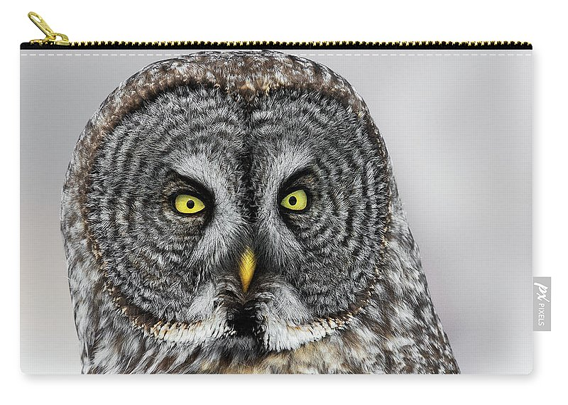 Owl Carry-all Pouch featuring the photograph Great Gray Owl Portrait by Christopher Ciccone