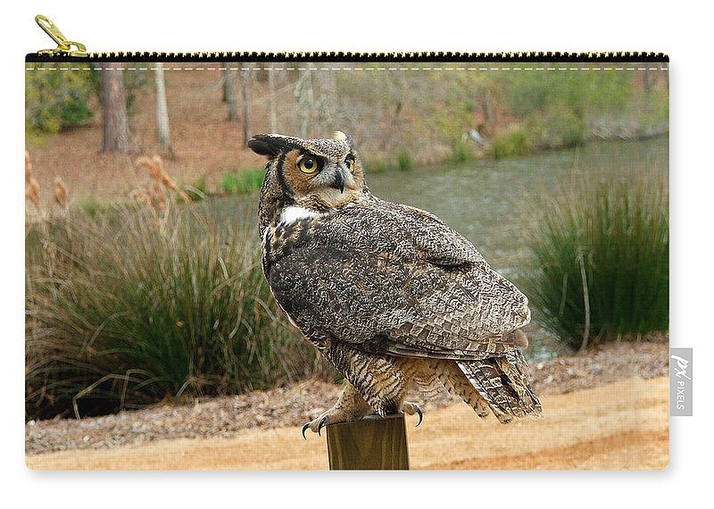 Wildlife Carry-all Pouch featuring the photograph Great Horned Owl 1 by Robert Meanor