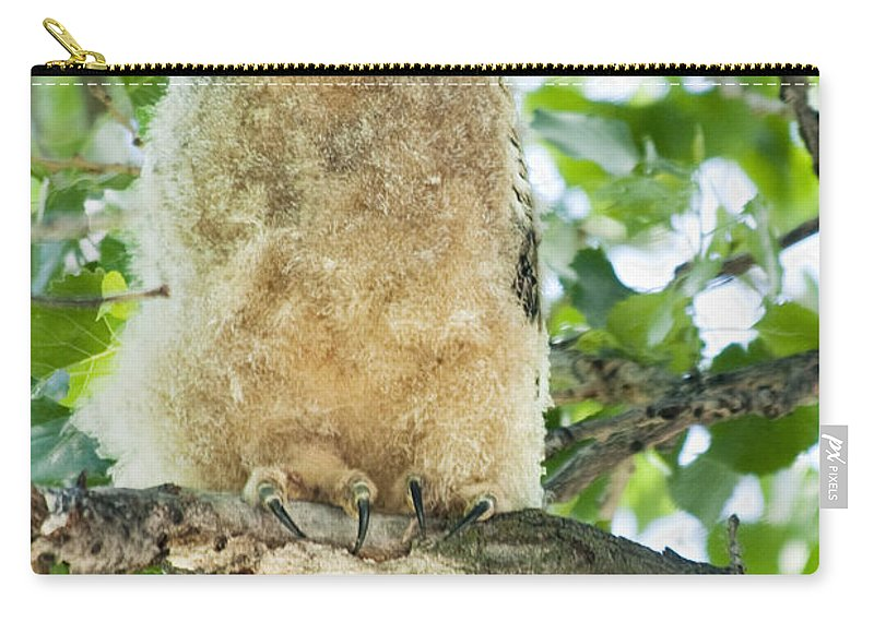 Owl Carry-all Pouch featuring the photograph Great Horned Owl by Gary Beeler