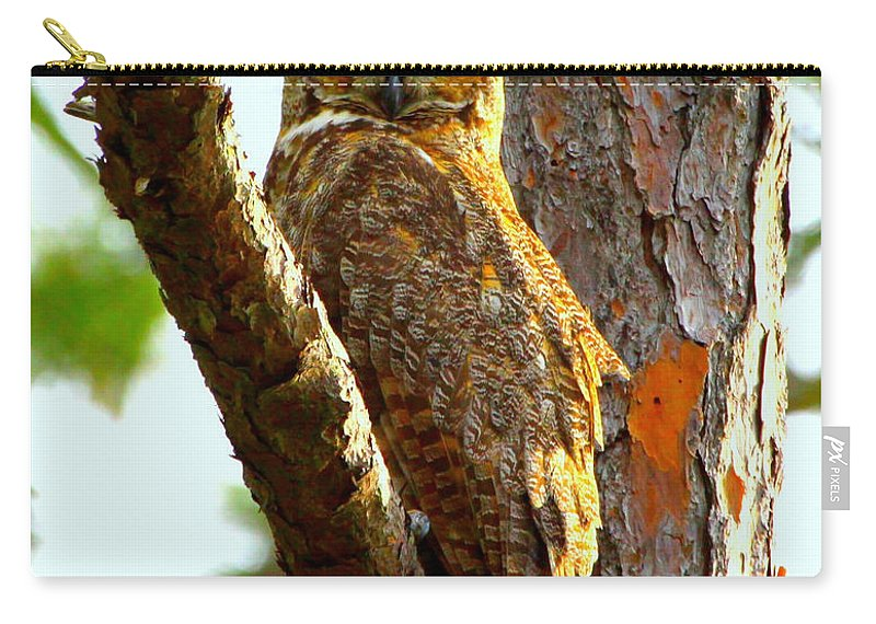 Great Horned Owl Carry-all Pouch featuring the photograph Great Horned Owl Wink by Barbara Bowen