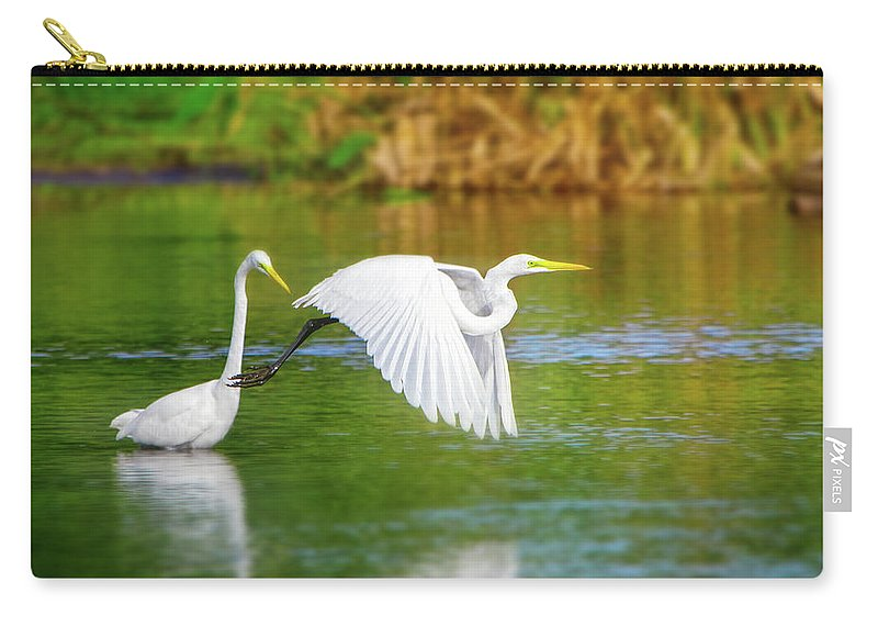 Great White Egret Carry-all Pouch featuring the photograph Great White Egrets by Mark Andrew Thomas