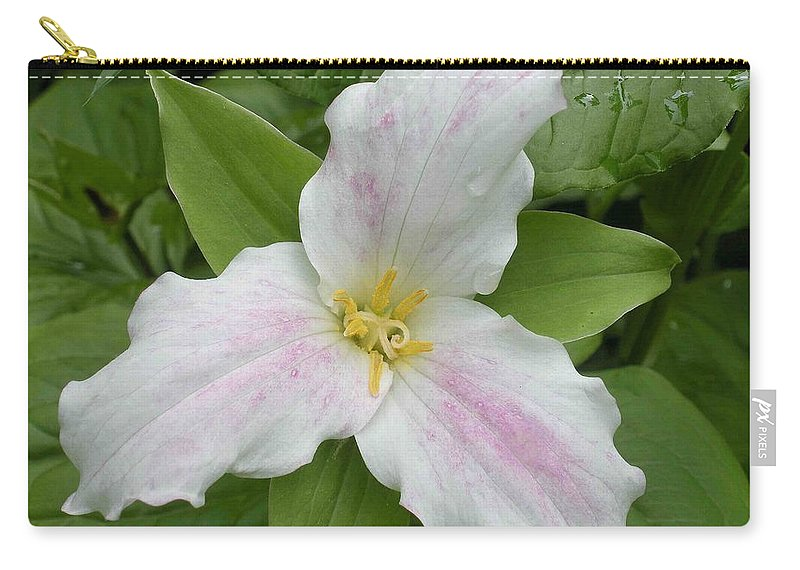 Trillium Carry-all Pouch featuring the photograph Great White Trillium by Nelson Strong