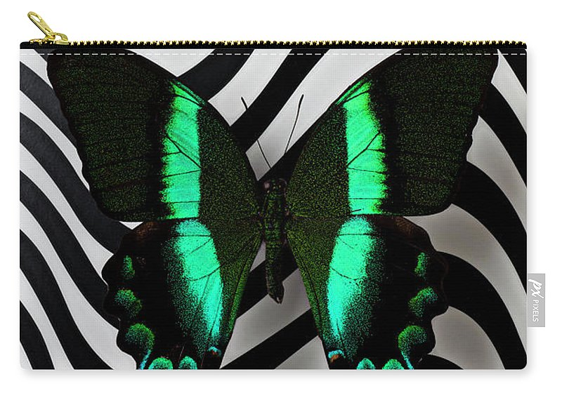 Green Carry-all Pouch featuring the photograph Green And Black Butterfly On Wavey Lines by Garry Gay
