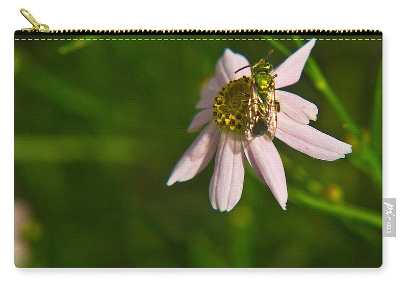 Green Carry-all Pouch featuring the photograph Green Bee Searches For Pollen by Douglas Barnett