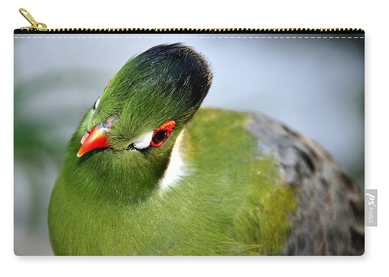 Tropical Carry-all Pouch featuring the photograph Green Bird by David Lee Thompson