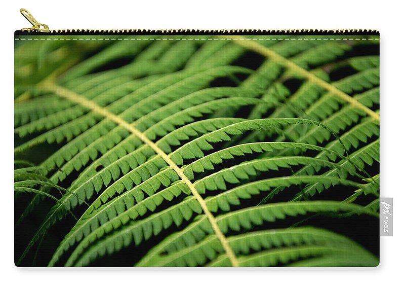 Bracken Carry-all Pouch featuring the photograph Green Bracken by Martin Capek