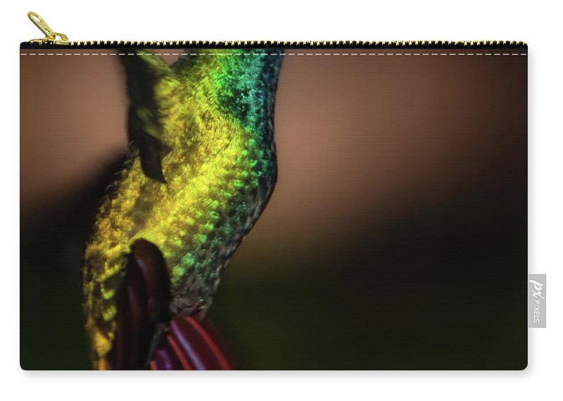 Animals Carry-all Pouch featuring the photograph Green Breasted Mango Hummingbird by Doug Sturgess