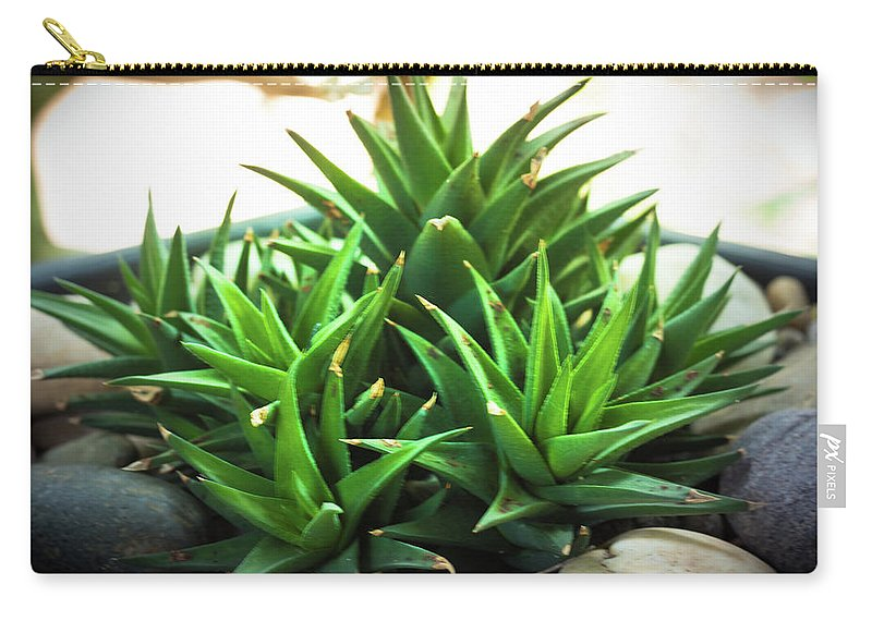 Green Carry-all Pouch featuring the photograph Green Cactus by Sacksith Vorlachith