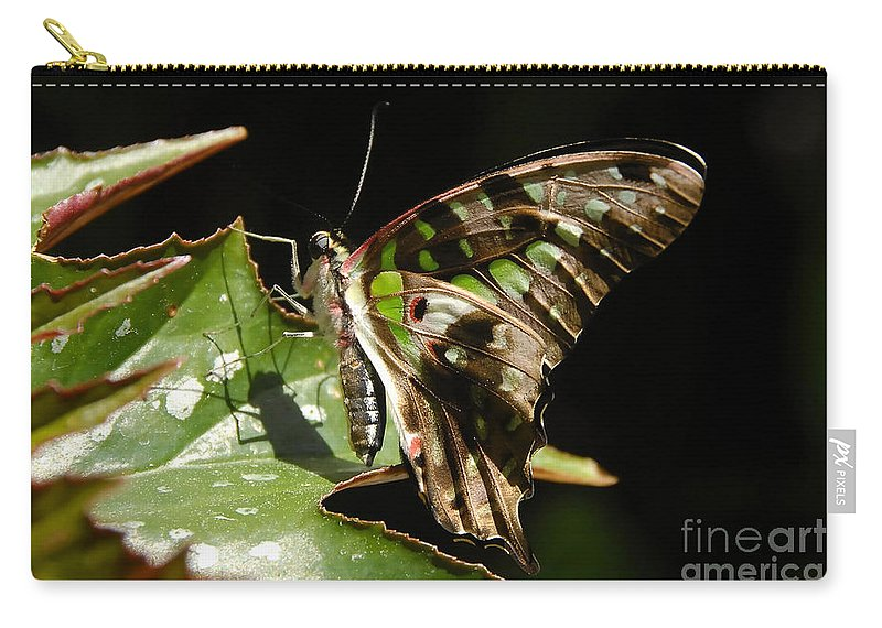 Butterfly Carry-all Pouch featuring the photograph Green Checkered Skipper by David Lee Thompson