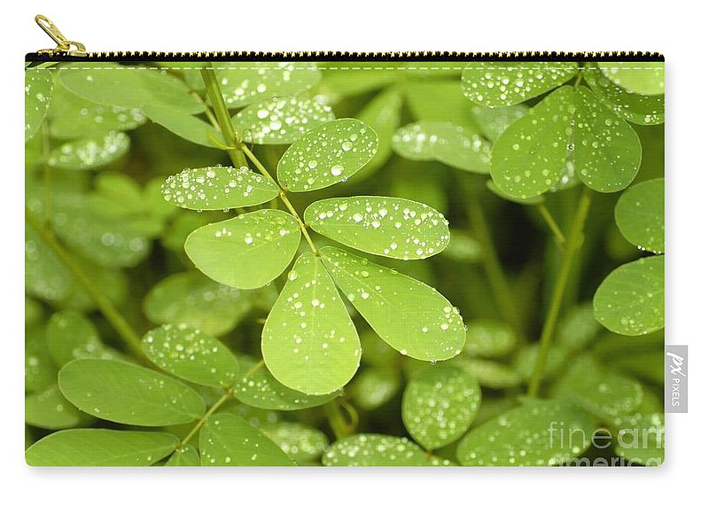 Green Carry-all Pouch featuring the photograph Green by David Lee Thompson