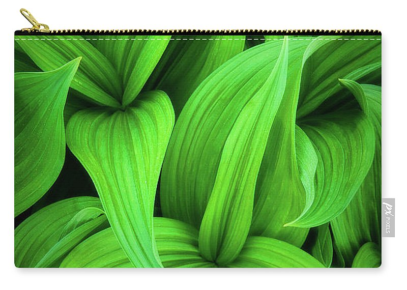 America Carry-all Pouch featuring the photograph Green False Hellebore by Inge Johnsson