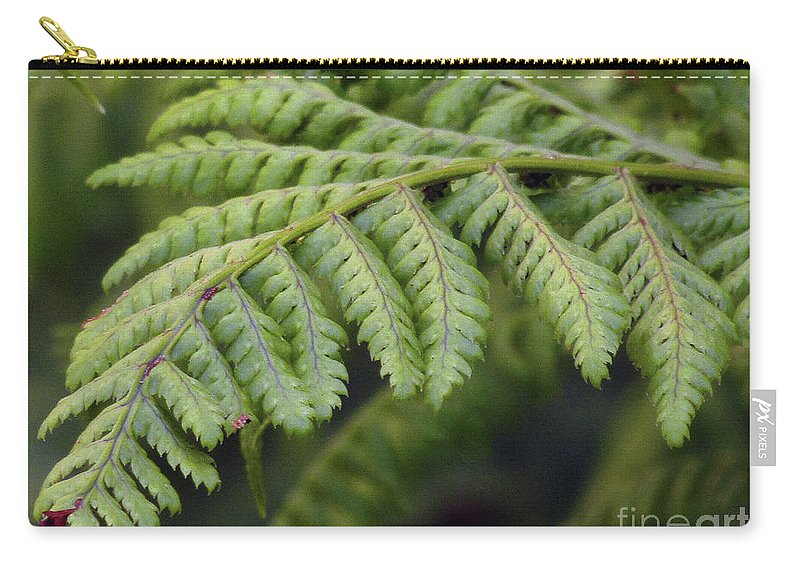 Fern Carry-all Pouch featuring the photograph Green Fern by Kim Tran
