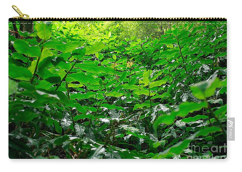 Deep Forest Carry-all Pouch featuring the photograph Green Foliage by Gaspar Avila