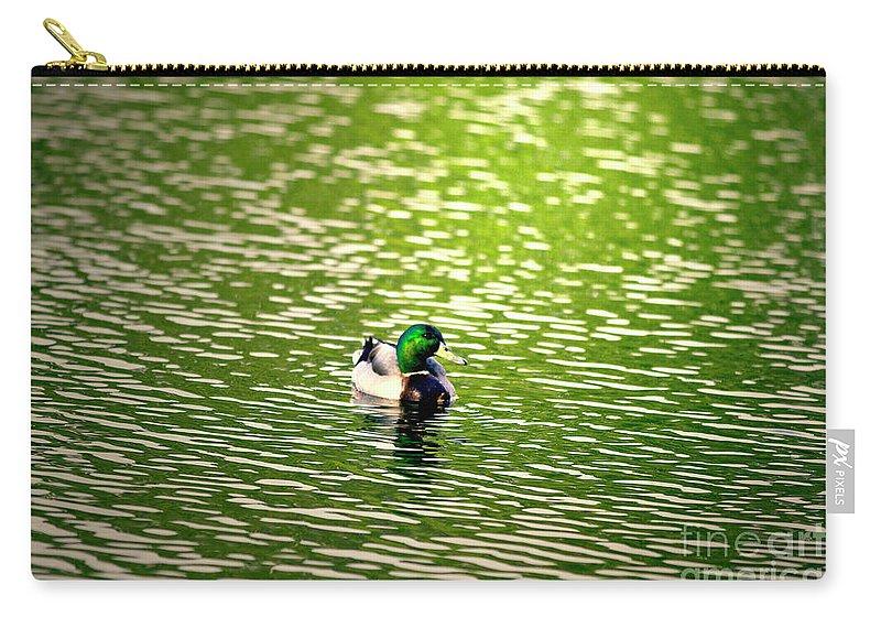 Mallard Carry-all Pouch featuring the photograph Green Head by Scott Pellegrin