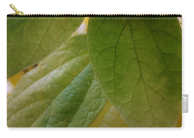 Leaves Carry-all Pouch featuring the photograph Green In Vein by Trish Hale