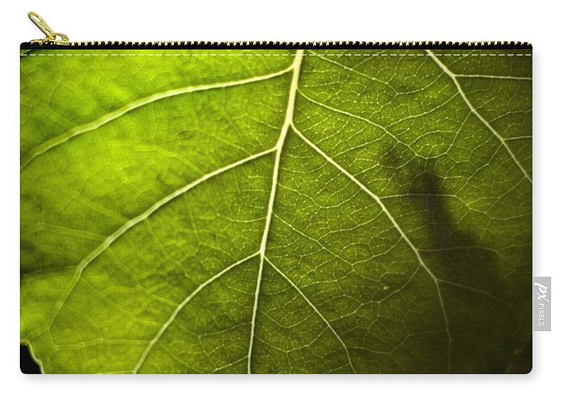 California Scenes Carry-all Pouch featuring the photograph Green Leaf Detail by Norman Andrus