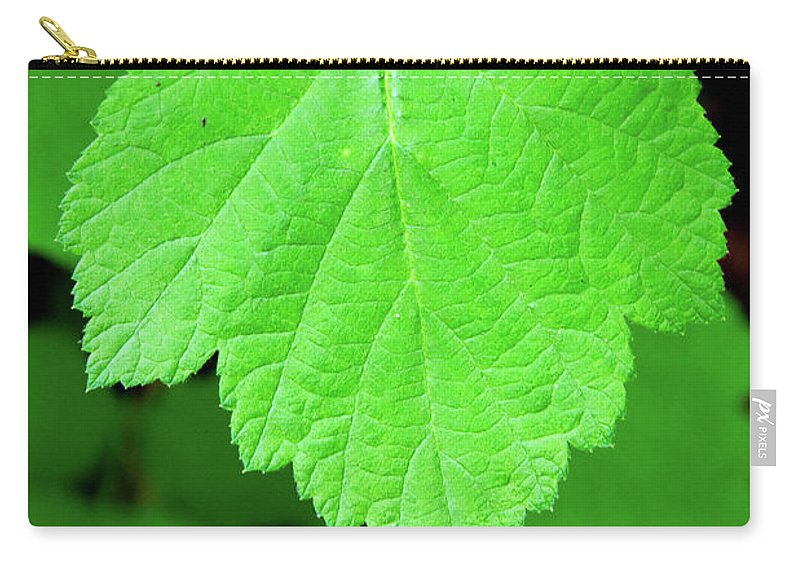 Nature Carry-all Pouch featuring the photograph Green Leaf by Jennifer Wick