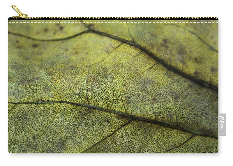 Nature Carry-all Pouch featuring the photograph Green Leaf by Linda Sannuti