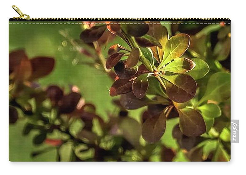 Willamette Carry-all Pouch featuring the photograph Green Leaf Spotlight by Jerry Sodorff